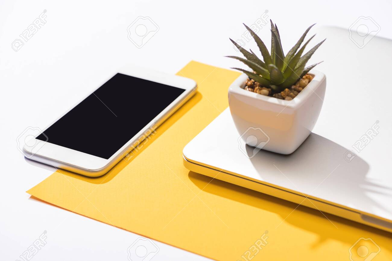 high angle view of smartphone, laptop, plant and paper - 134818817