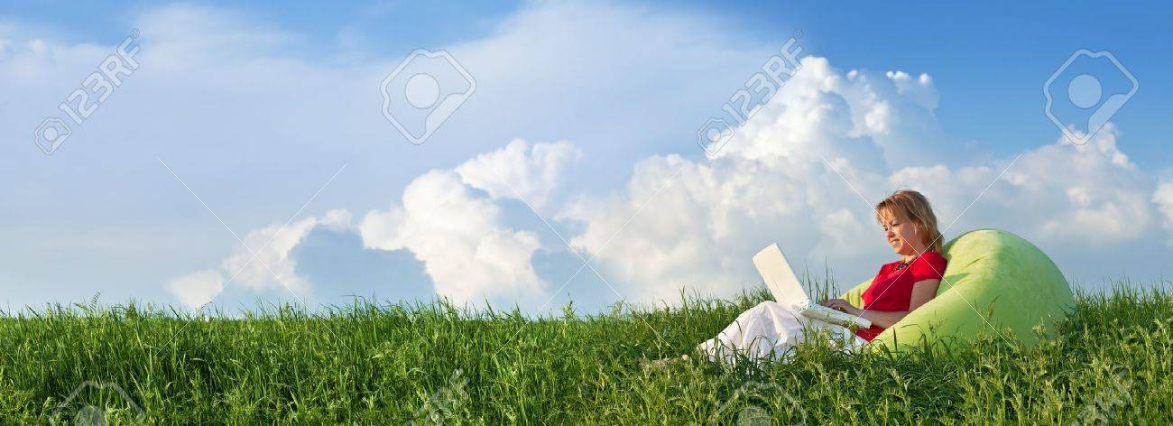 Woman with laptop computer outdoors in the fresh spring grass - panorama - 17533995