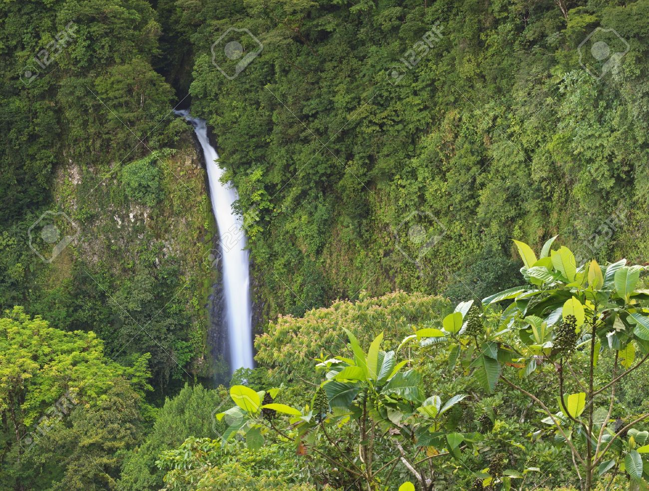 Distant view of La Fortuna Waterfall amongst the rainforest near Arenal Volcano in Costa Rica - 13438801
