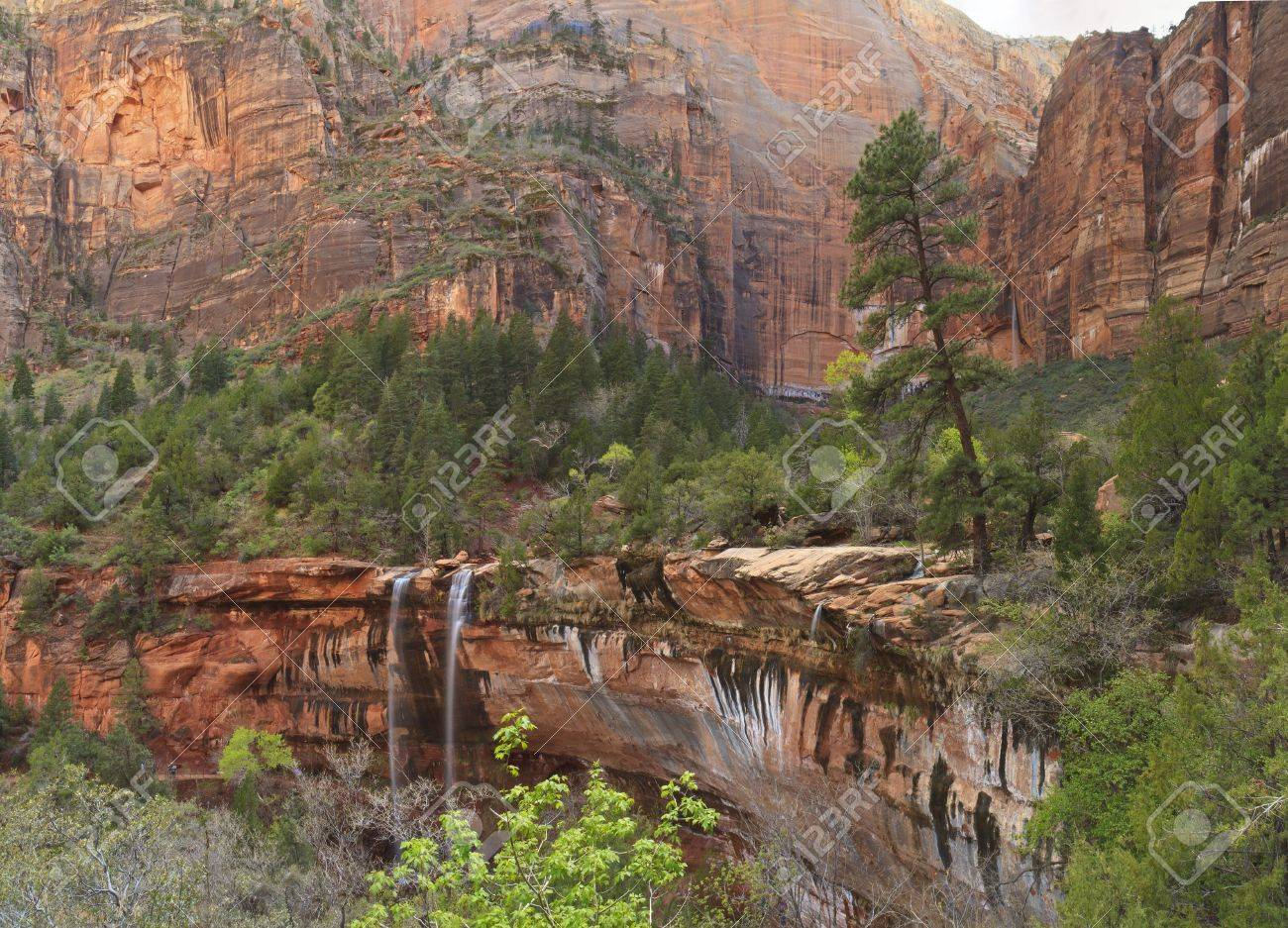 Water falls from a forested canyon over a red cliff at Emerald Pools in Zion National Park, Utah - 13573421