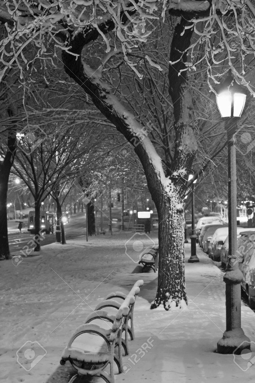 Black and white picture of the walkway and bike path during November Nor'easter on Eastern Parkway in Brooklyn, NY - 16437561