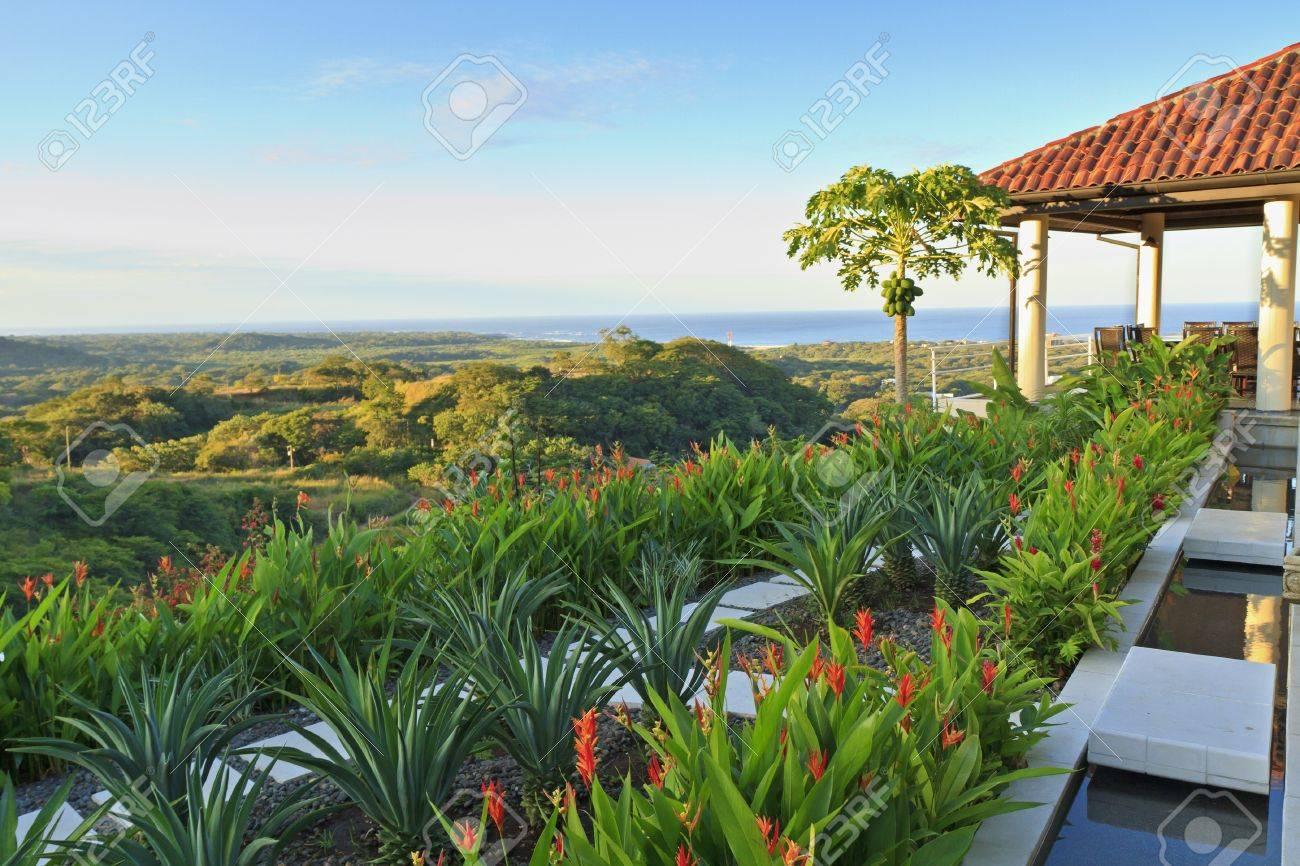Villa tropical garden and coconut tree overlooking Tamarindo and Pacific Ocean in Guanacaste, Costa Rica - 16712015