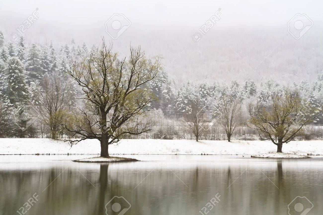 Snow-covered islands with trees on a Catskills lake near Big Indian, New York - 16712029