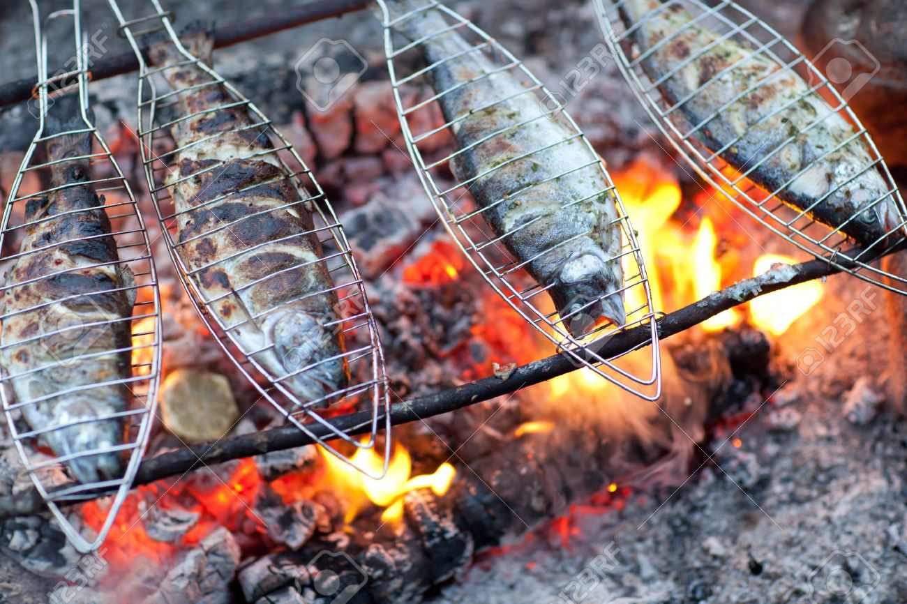 Grilling Fish On Campfire Stock Photo