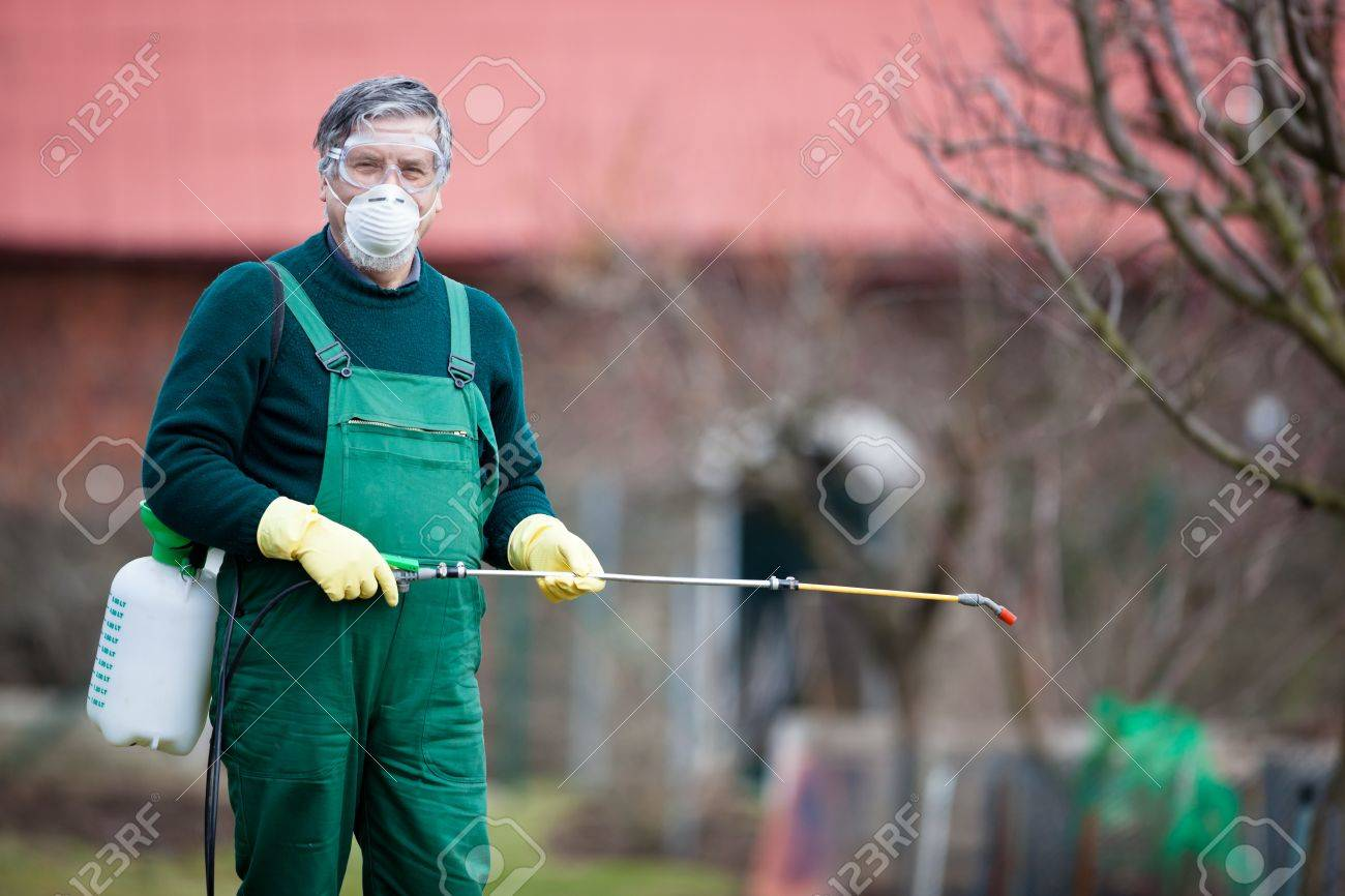 Using Chemicals In The Garden Orchard Gardener Applying An