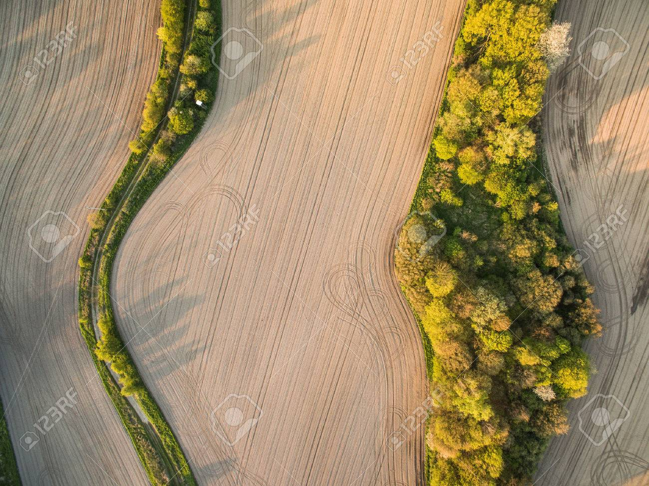 Farmland from above - aerial image of a lush green filed - 56715259