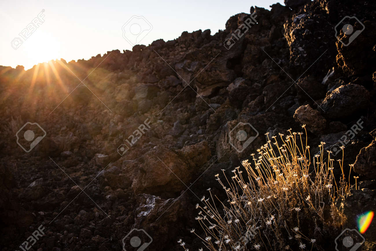 Colorful scenic landscape of moon rise in Tenerife national park of Teide. El Teide with moon rising by its side. - 171623473