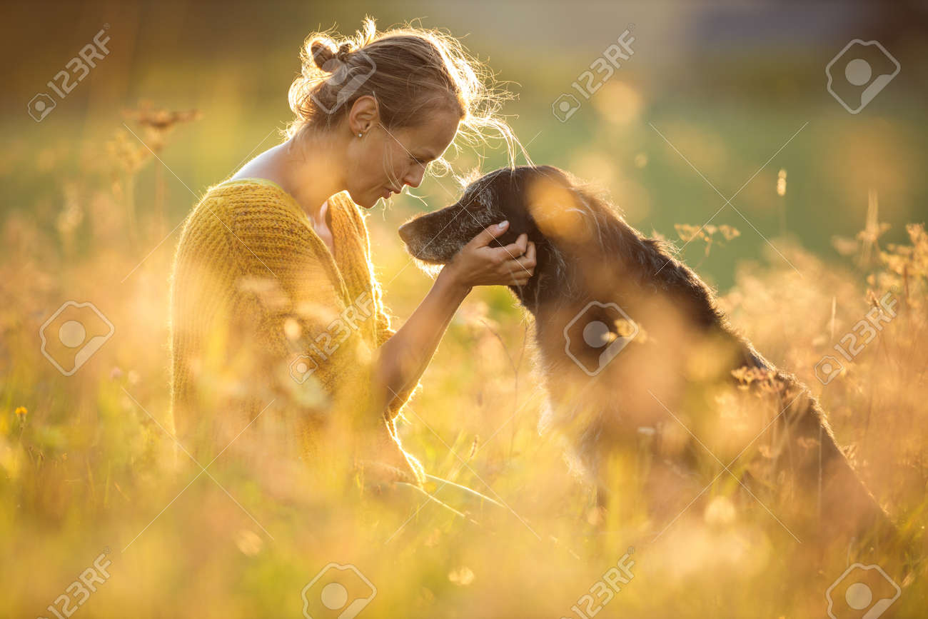 Pretty, young woman with her large black dog on a lovely sunlit meadow in warm evening light, playing together - 171623508