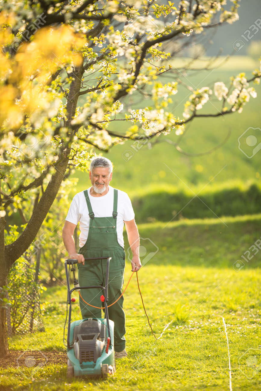 Portrait of senior man gardening, taking care of his lovely orchard, ejoying actively his retirement - 171623543