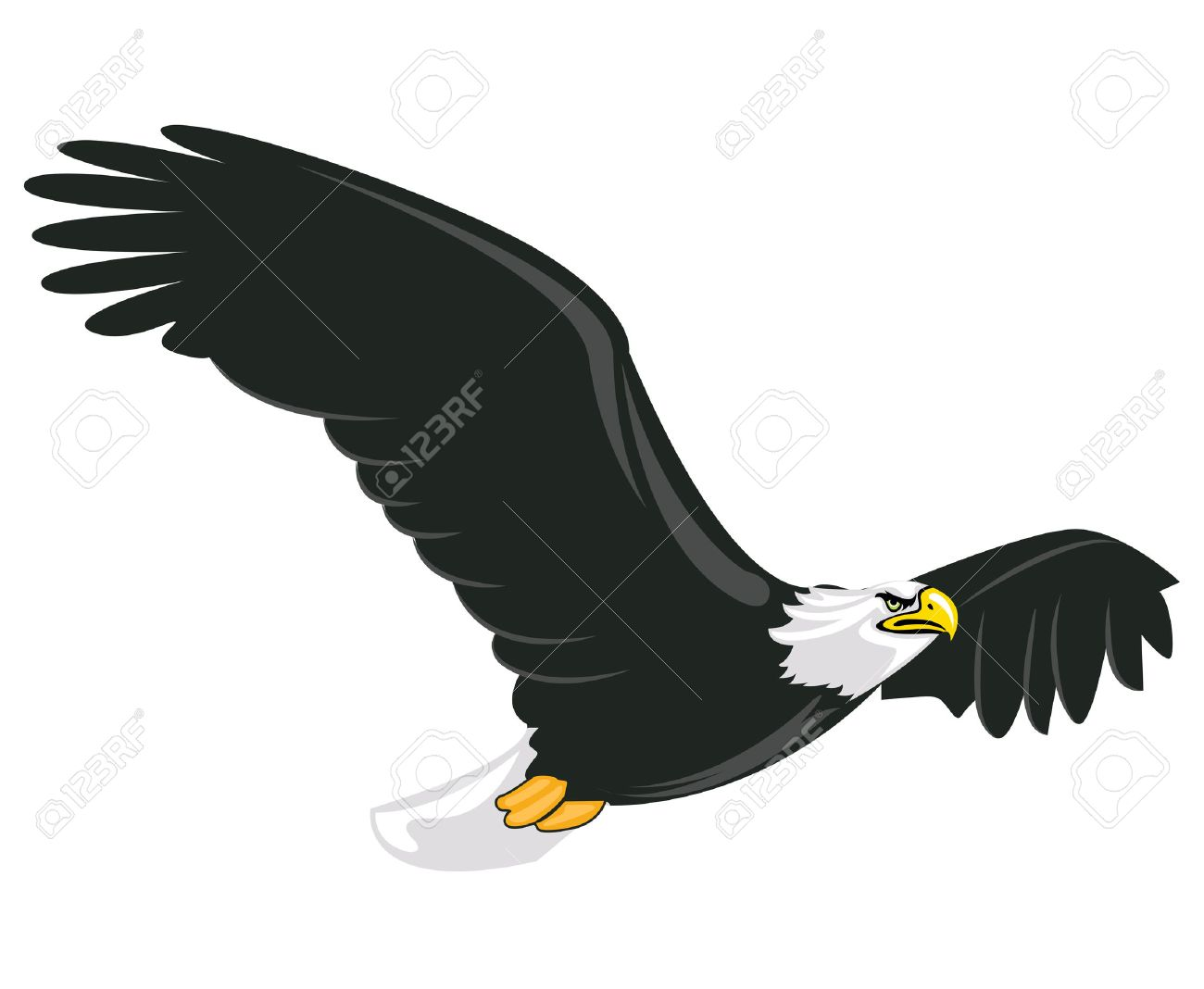 Illustration of majestic adult bald eagle flying with white background Stock Vector - 7933213