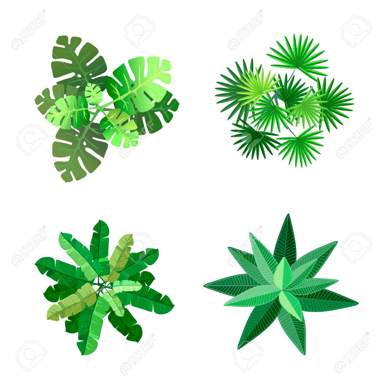 Trees Top View For Landscape Vector Illustration On White ... for Plant Top View Vector  113cpg