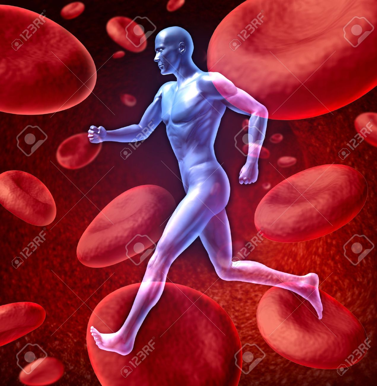 Human cardiovascular blood circulation system represented by a running human with a background of red blood cells flowing through an artery showing the concept of the medical circulatory body that is well oxygenated. Stock Photo - 10743739