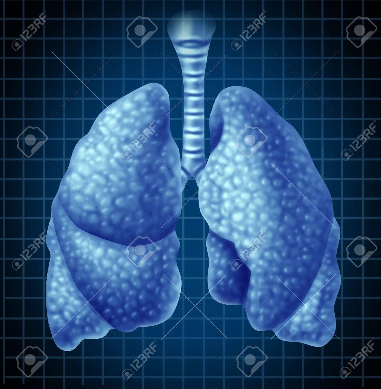 Rgano De Los Pulmones Humanos Como Un Símbolo De Salud Médica Que ...