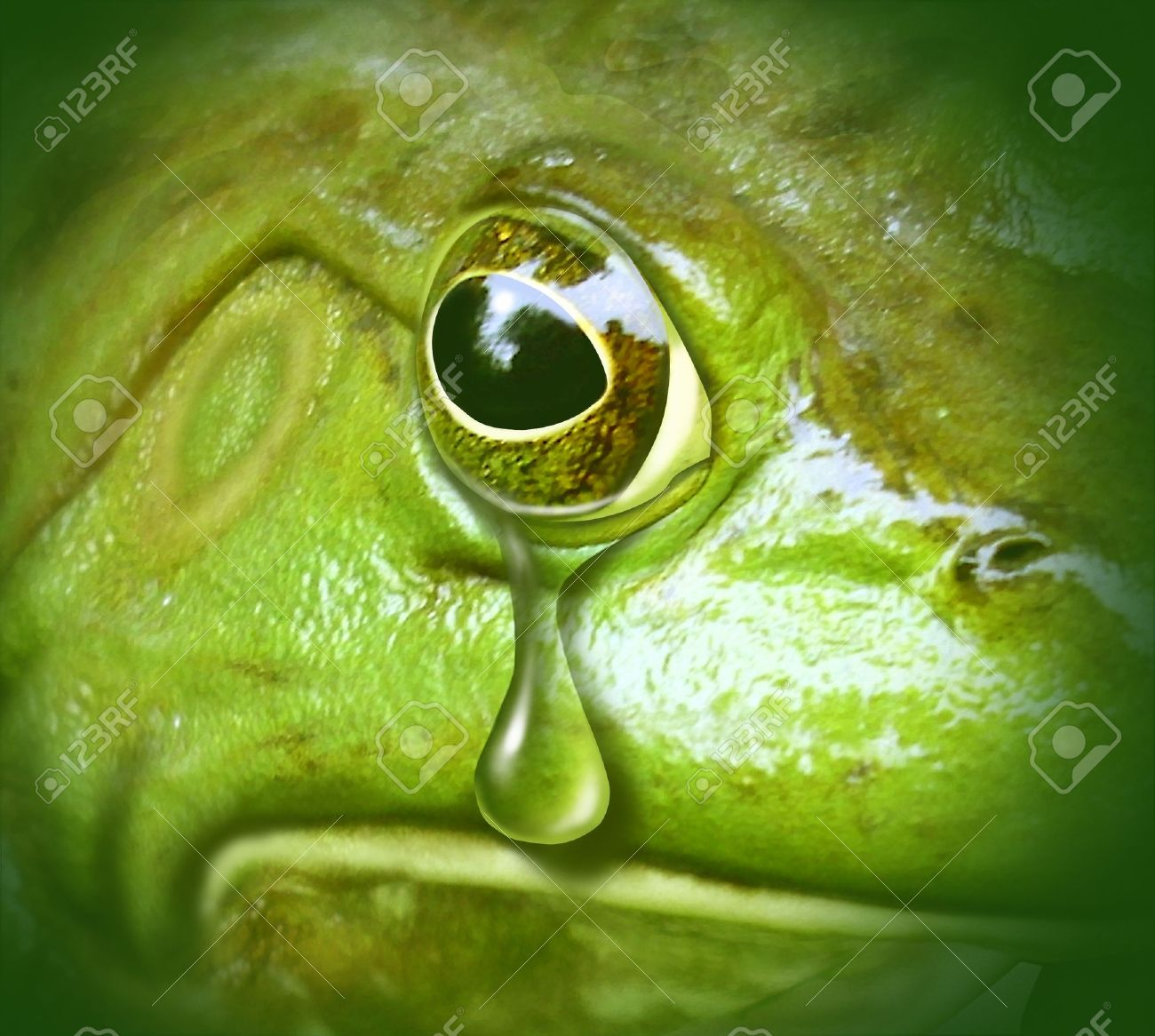 polluted environment green frog crying tears pollution disaster symbol Stock Photo - 10976385