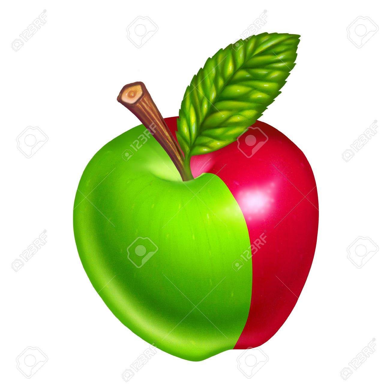 green and red apples. green and red apples isolated on white background stock photo - 10976370