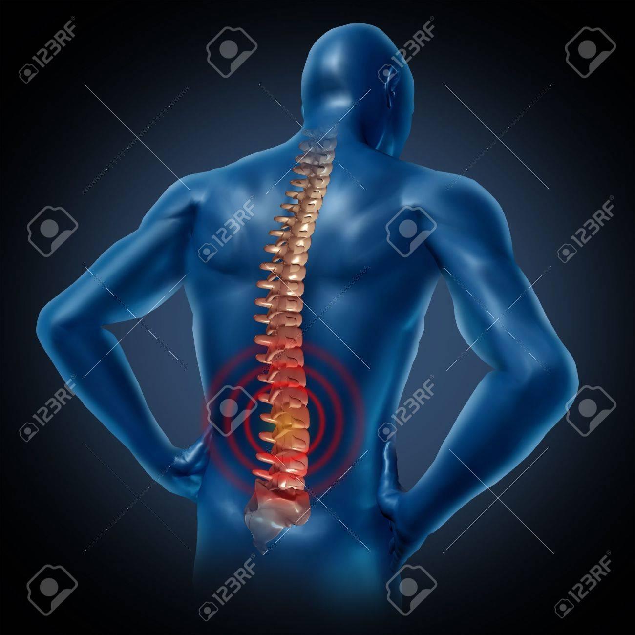 Dolor En La Espalda Del Cuerpo Humano Esqueleto De La Columna ...