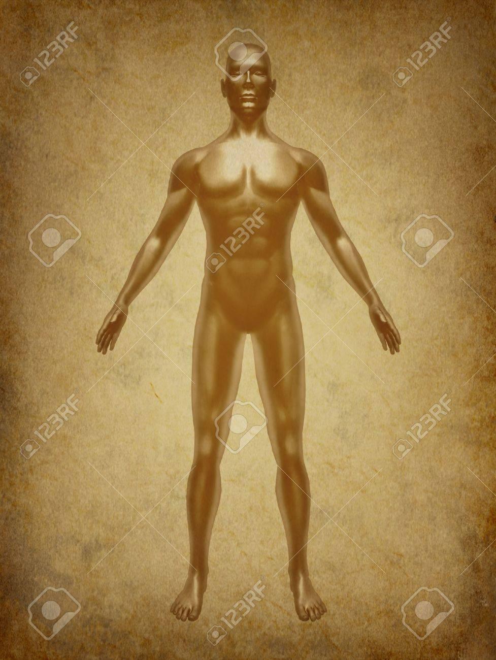 Humanos Cuerpo Médico De Rayos X Representan El Símbolo Gráfico De ...