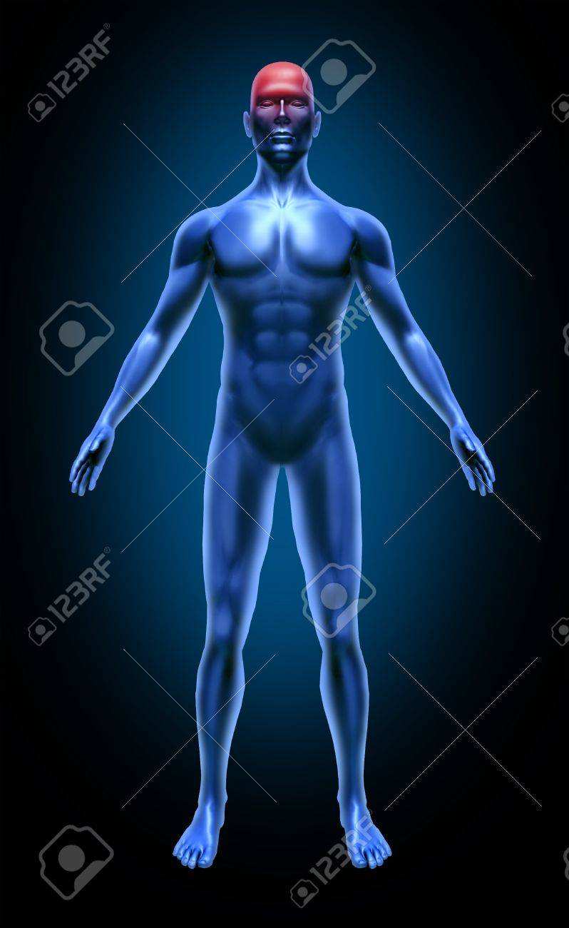 Human body head ache brain migrain stroke accident circulation neurology medical x-ray pose joints muscles blue Stock Photo - 11570594