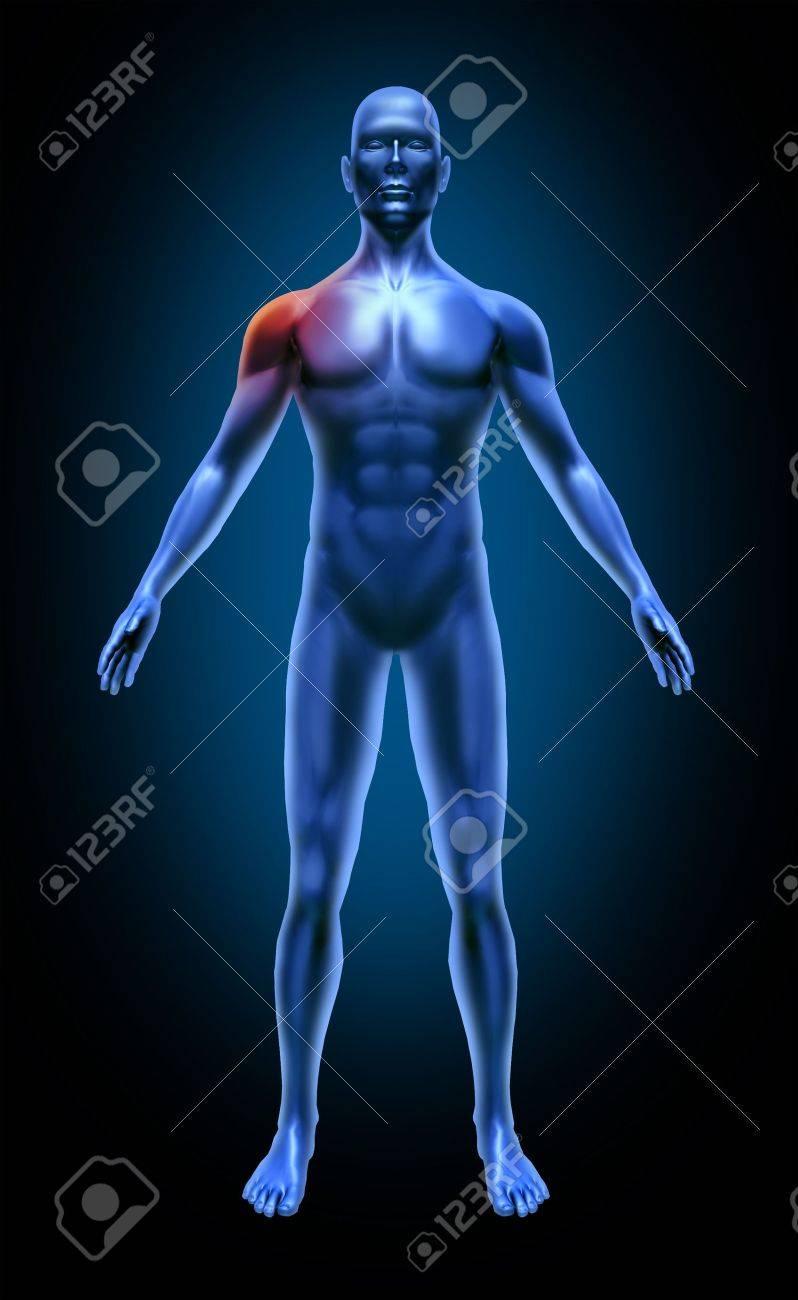 Hombro Del Cuerpo Humano Dolor Accidente Médico Xray Plantean Los ...