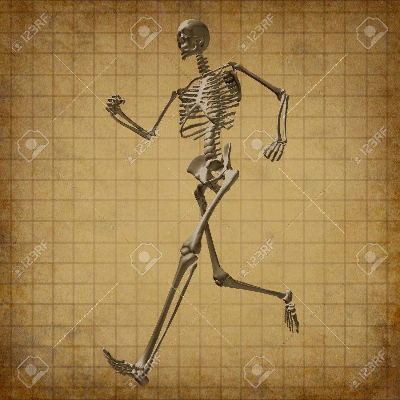Skeleton running medical health care grunge old parchment document fitness bones symbol chart diagram Stock Photo - 11570650