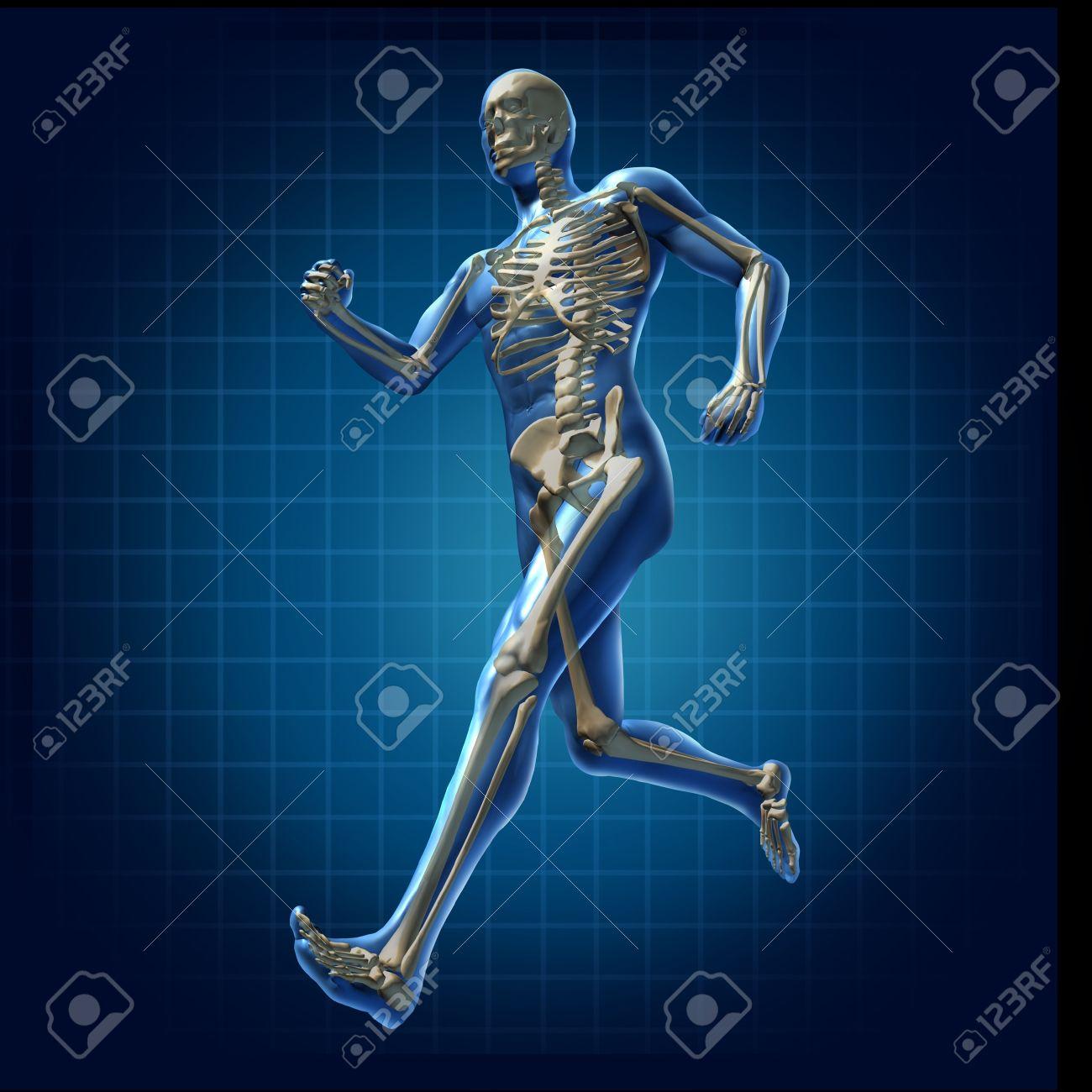 Atemberaubend Skelett Markierte Diagramm Zeitgenössisch - Anatomie ...