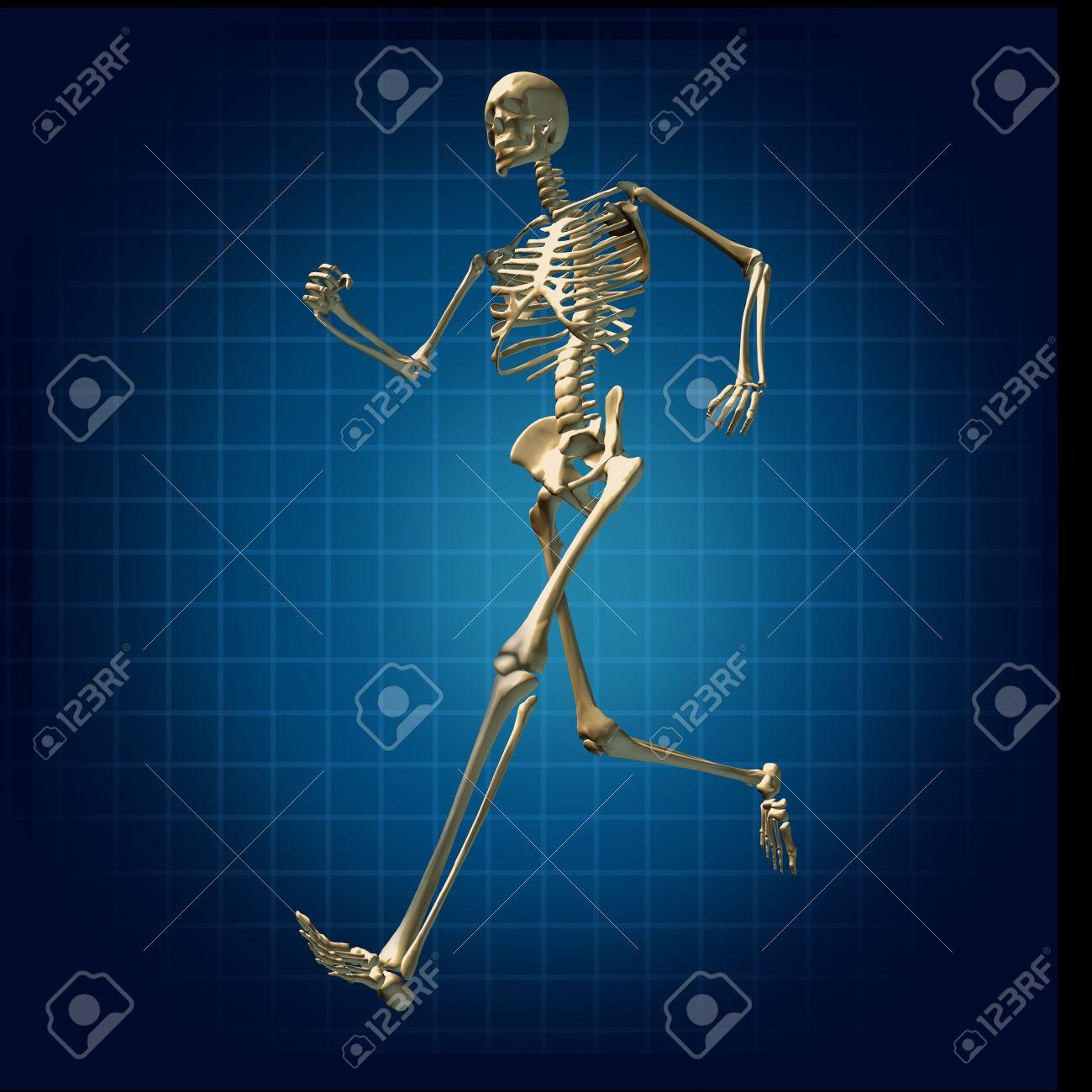Esqueleto Corriendo La Atención Médica De Salud Física Huesos ...