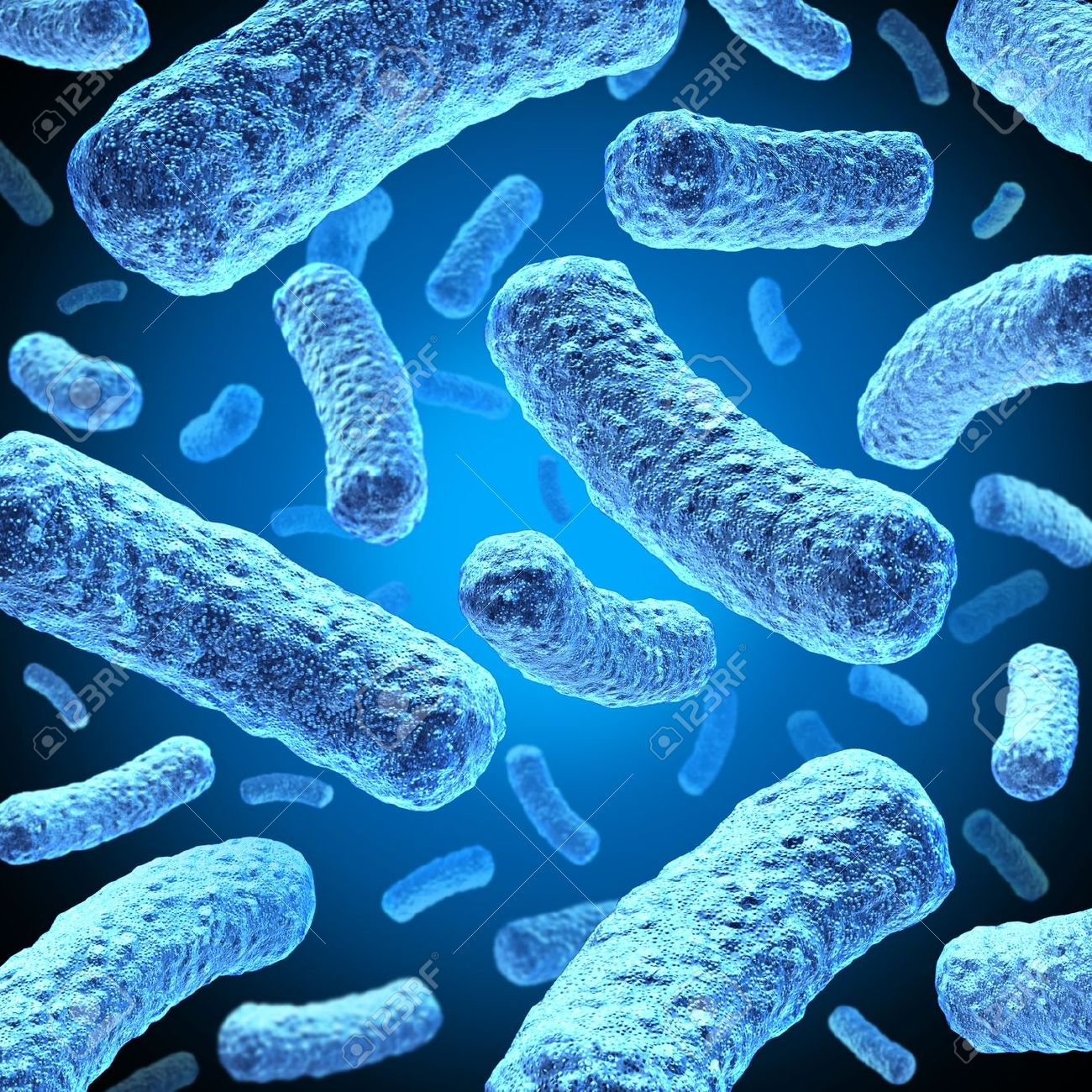 Bacteria And Bacterium Cells F...