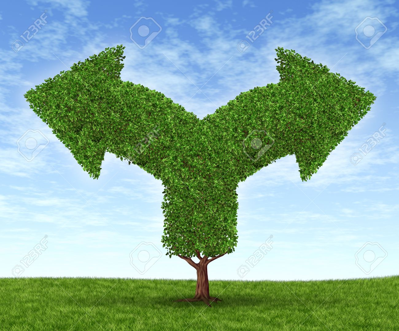 Growing business options and financial dilemma due to growth in financial fortune as a tree and leaves in the shape of forked arrows going in opposite directions on a blue summer sky with green grass - 13070408