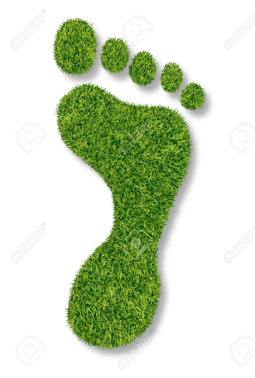 carbon footprint or gardening symbol with green grass natural