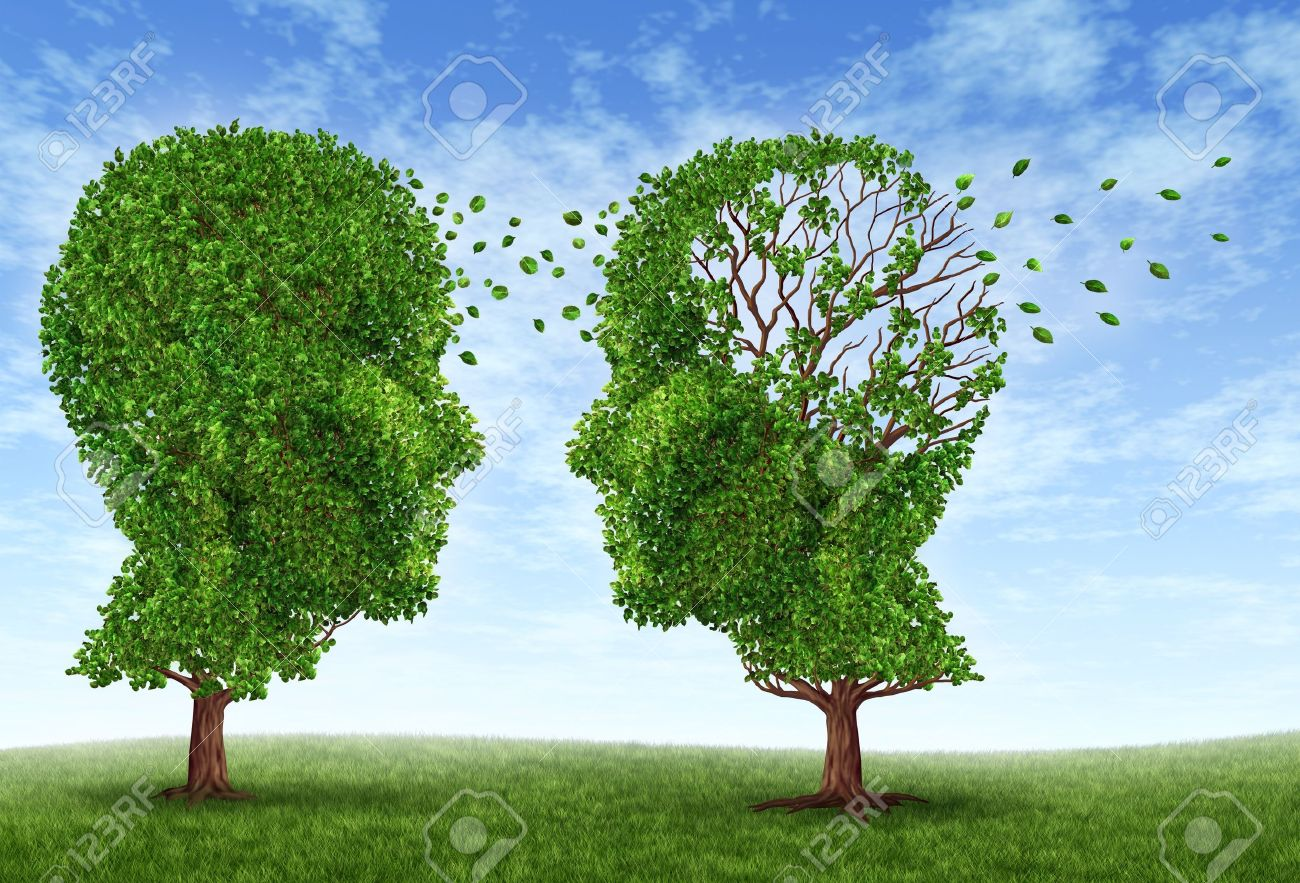 Living with alzheimers disease with two trees in the shape of a human head and brain as a symbol of the stress and effects on loved ones and caregivers by the loss of memory and cognitive intelligence function Stock Photo - 13325479