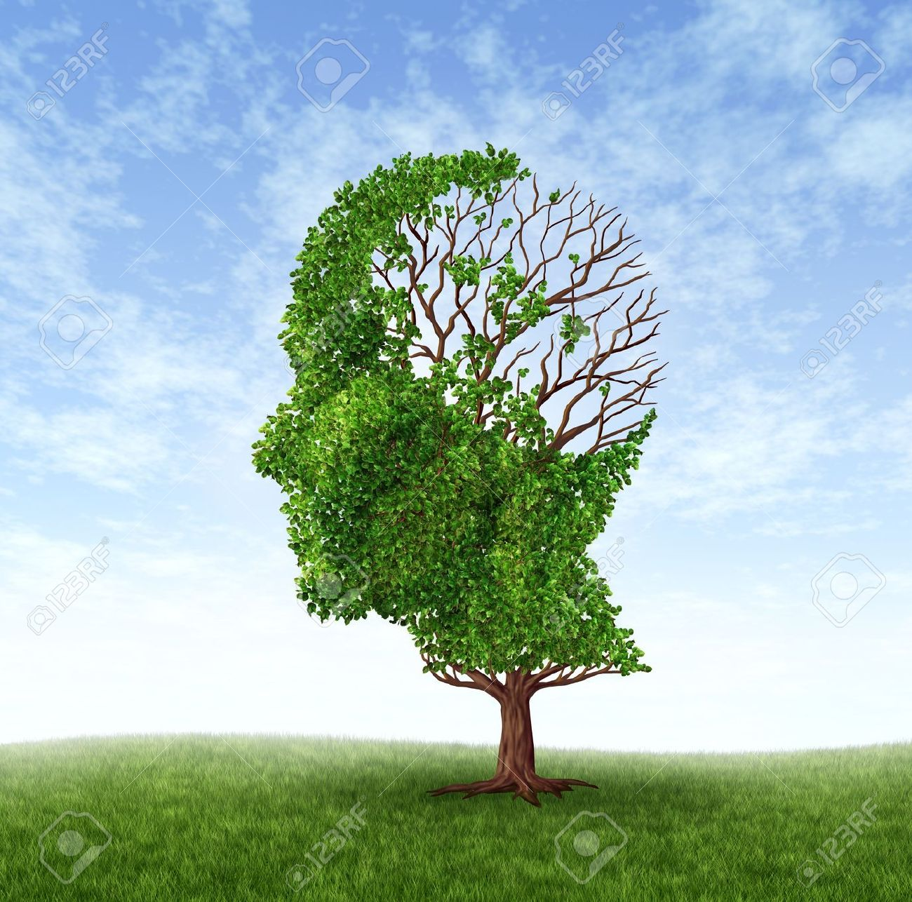 Dementia concept of memory loss due to Alzheimer Stock Photo - 13559416