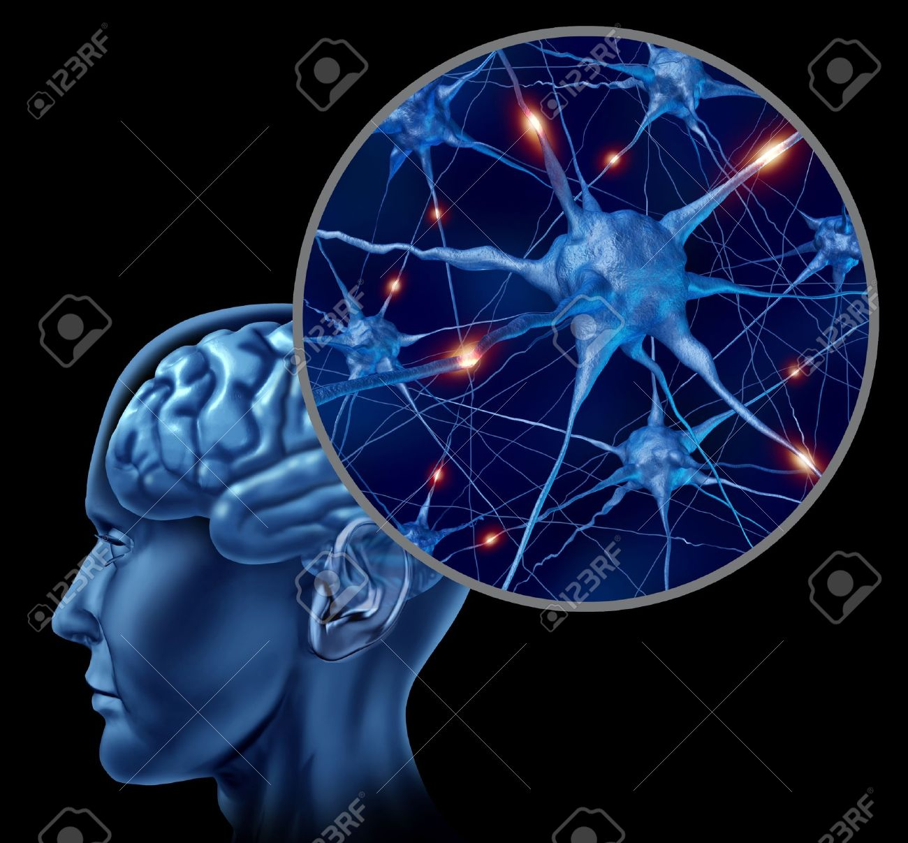 human brain medical symbol represented by a close up of neurons human brain medical symbol represented by a close up of neurons and organ cell activity showing