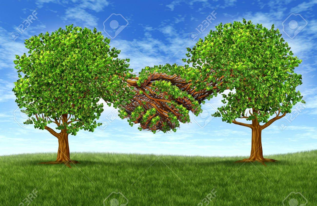 Business Partnership Growth Success With Two Growing Gree Trees