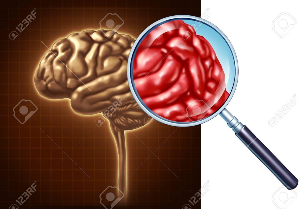 Gehirn Close Up Mit Einem Fokus Auf Die Neurologische Aktivität Mit ...