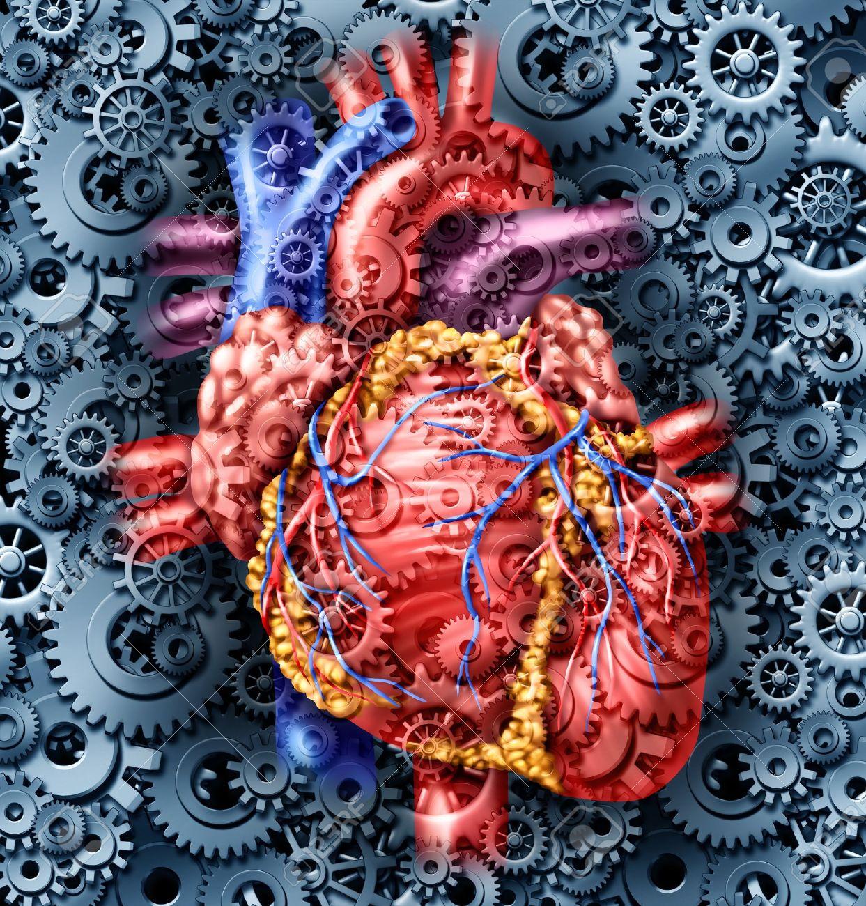 Menschliche Gesundheit Des Herzens Medizinische Versorgung Symbol ...