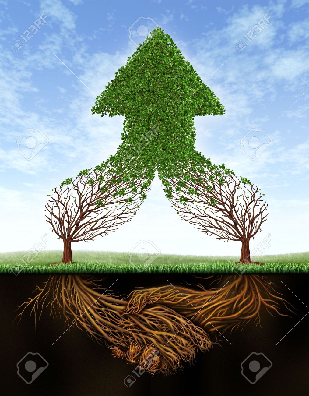 Business deal growth and team partnership with the roots of two trees  in the shape of a human hand shake and the empty branches succeding in the form of a healthy green upward arrow on a summer sky Stock Photo - 15418176
