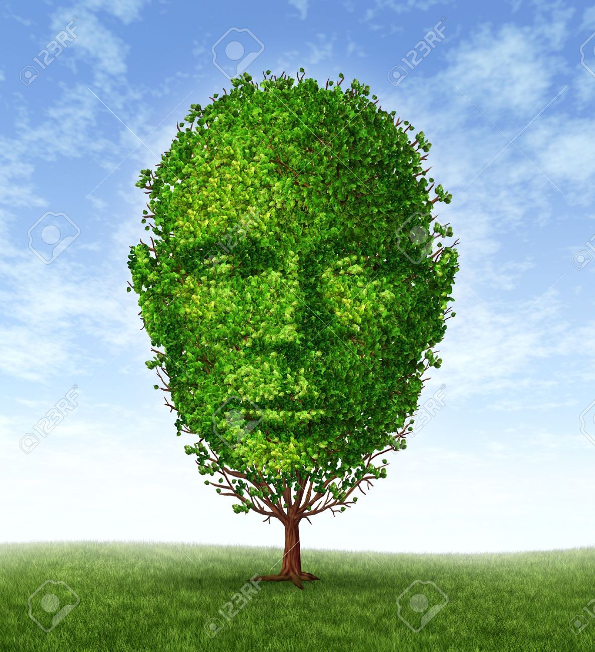 Personal Development And Personality Growth As A Medical Symbol Of