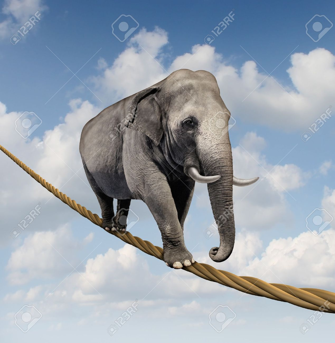Managing risk and big business challenges and uncertainty with a large elephant walking on a dangerous rope high in the sky as a symbol of balance and overcoming fear for goal success Stock Photo - 16831822