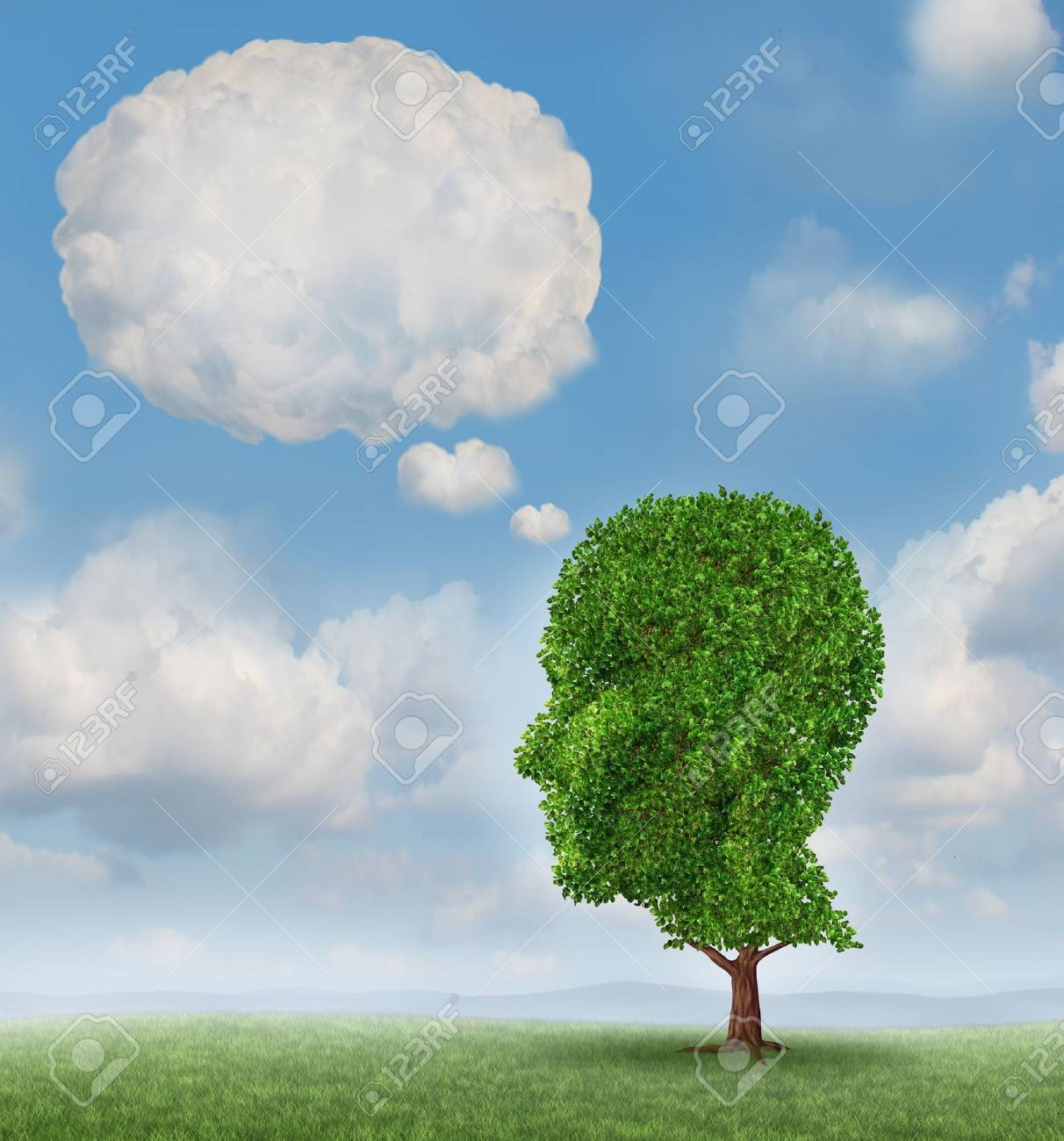 Communication growth with a tree shaped as a human head with a blank word bubble made of clouds as a business concept of growing ways of sending a message using cloud technology Stock Photo - 19446909