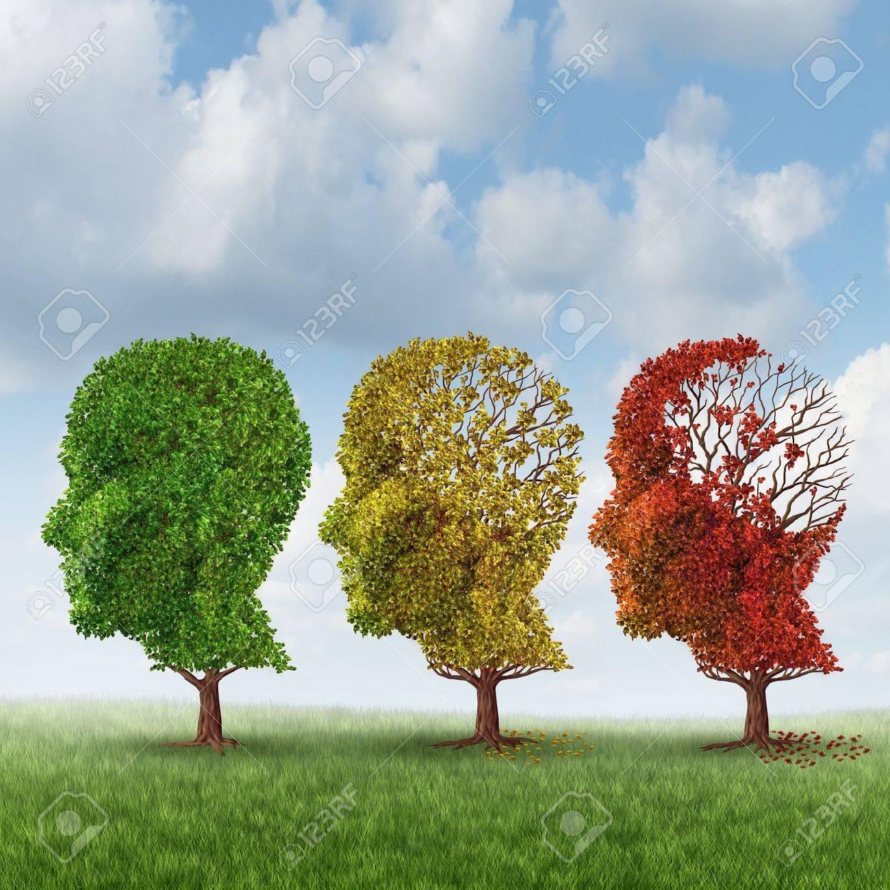 Envejecimiento Cerebral Y Pérdida De Memoria Debido A La Demencia Y El  Alzheimer Fotos, Retratos, Imágenes Y Fotografía De Archivo Libres De  Derecho. Image 20235889.