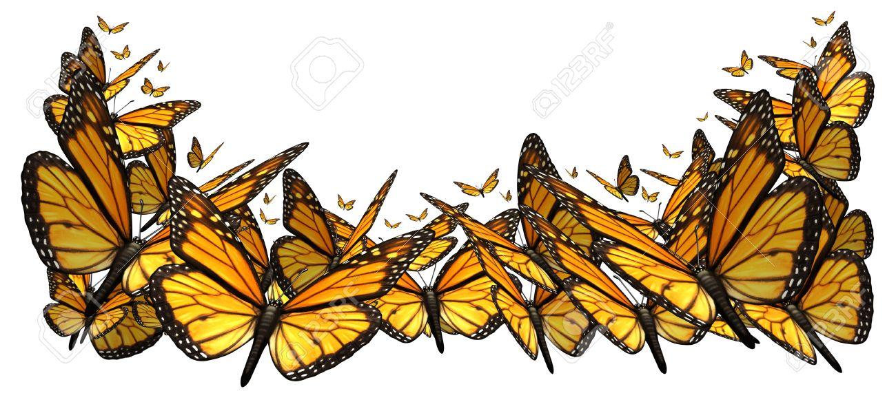 Butterfly Frontera Elemento De Diseño Aislado En Un Fondo Blanco ...