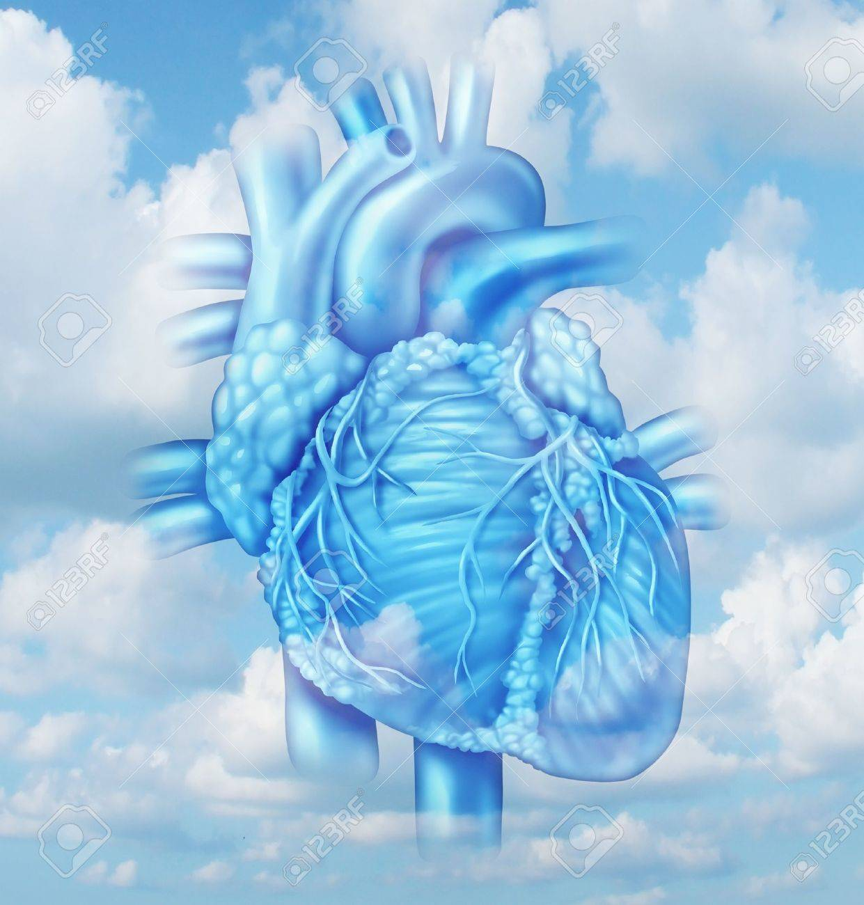 Heart health medical concept with a human cardiovascular body part from a healthy person on a sky background as a medical symbol of clean arteries Stock Photo - 20235845