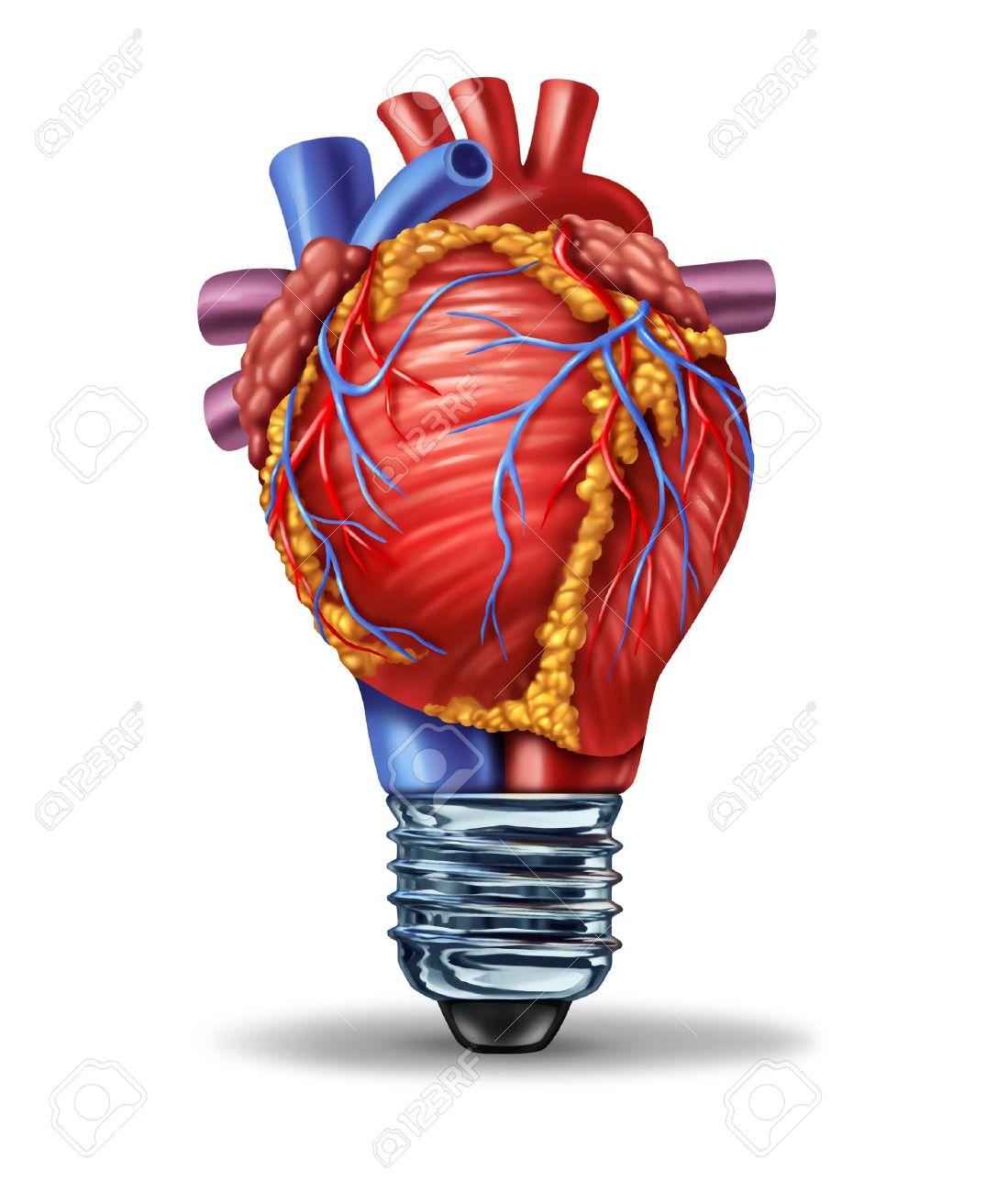 Ideas Para La Salud Del Corazón Y La Nueva Investigación E ...