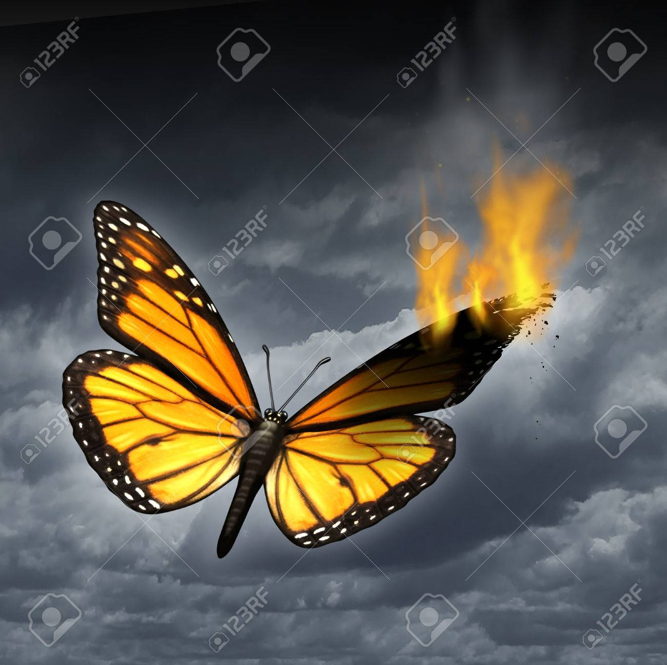 creative crisis business concept as a monarch butterfly in