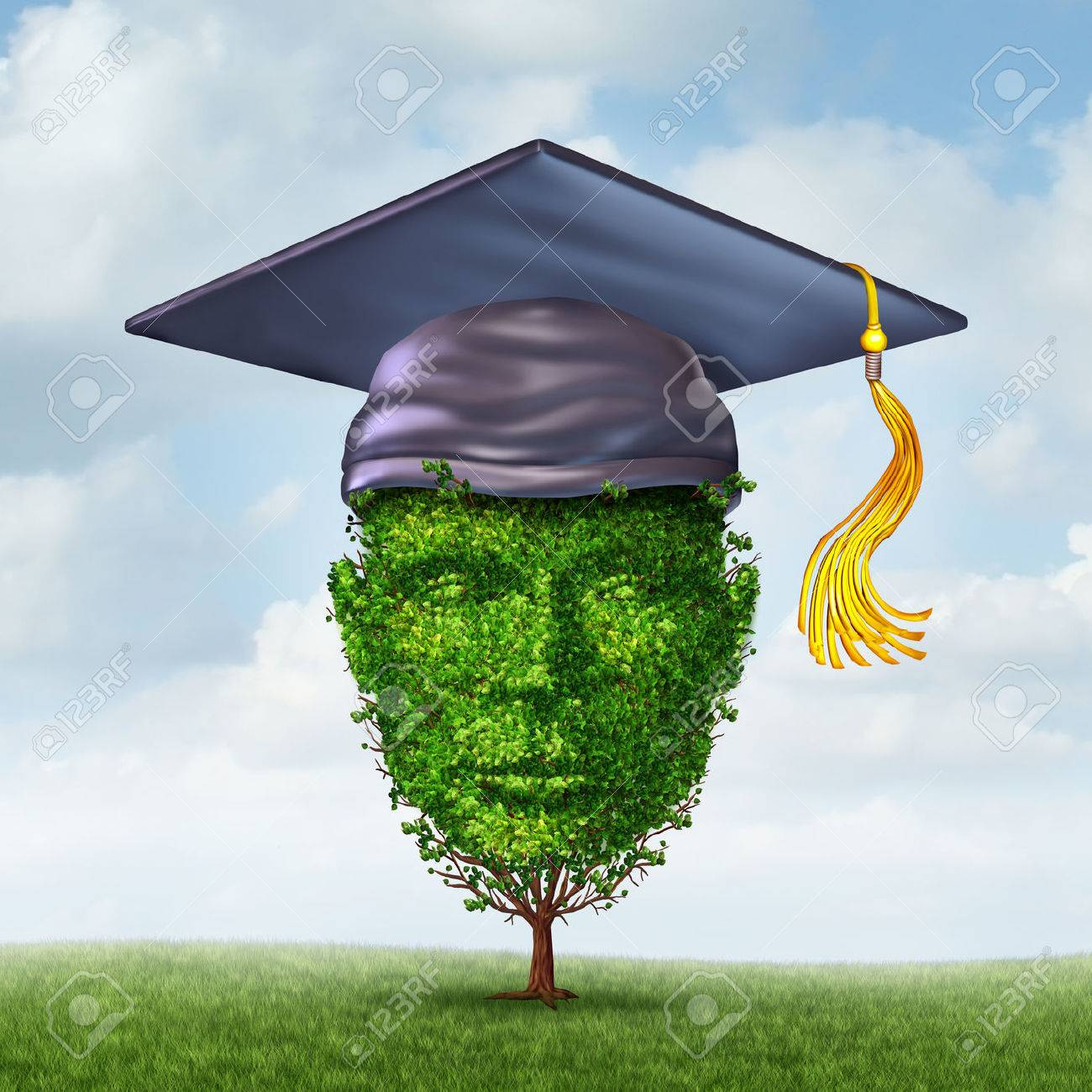 What is the necessity of education for career growth?