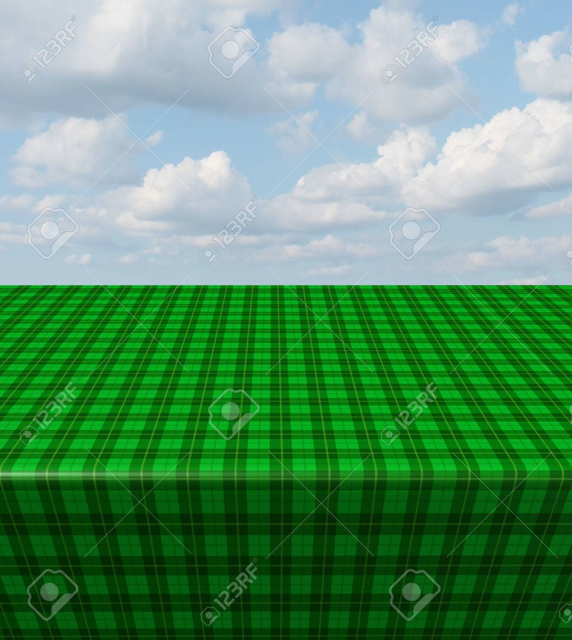 Green Checkered Tablecloth Table With A Blank Empty Picnic Cloth Stock  Photo   26711371
