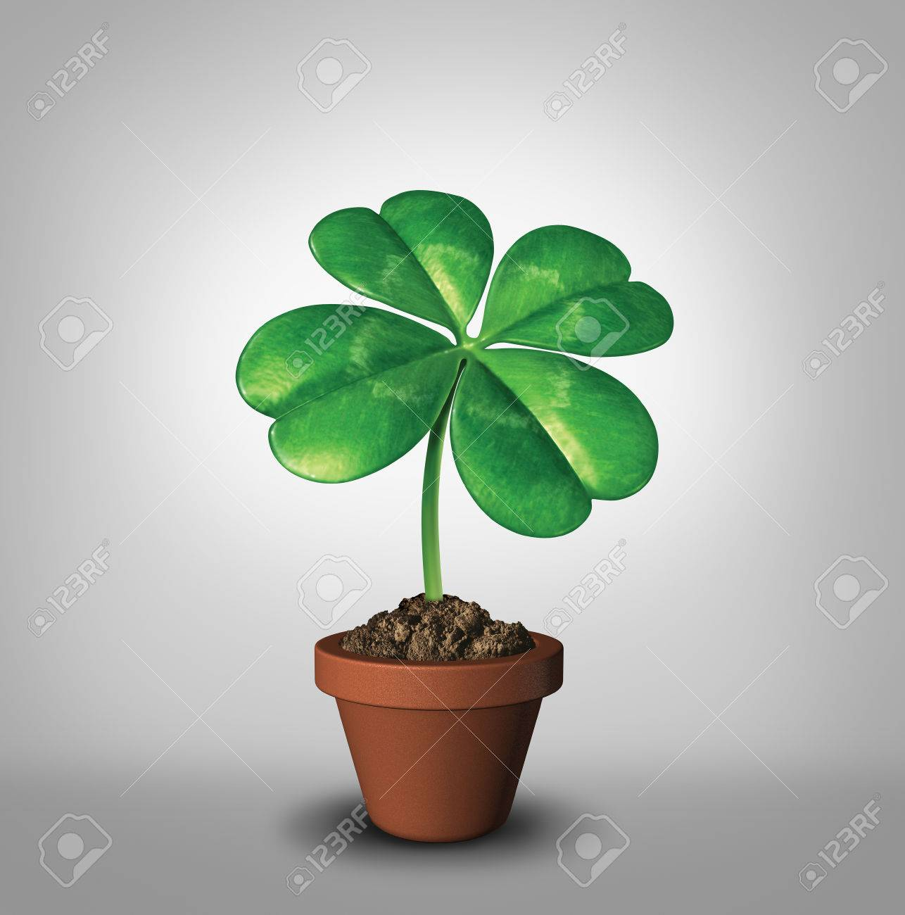 Growing Your Luck As A Four Leaf Clover Plant In A Flower Pot
