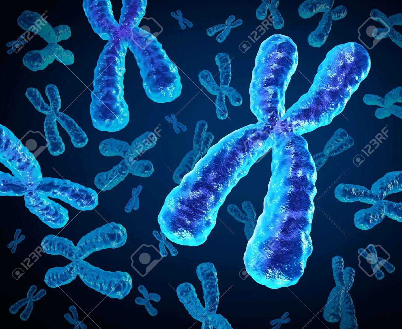 Cromosomas Grupo Como Un Concepto Para Un X Estructura De La Biología Humana Que Contiene La Información Genética De La Dna Como Un Símbolo Médico