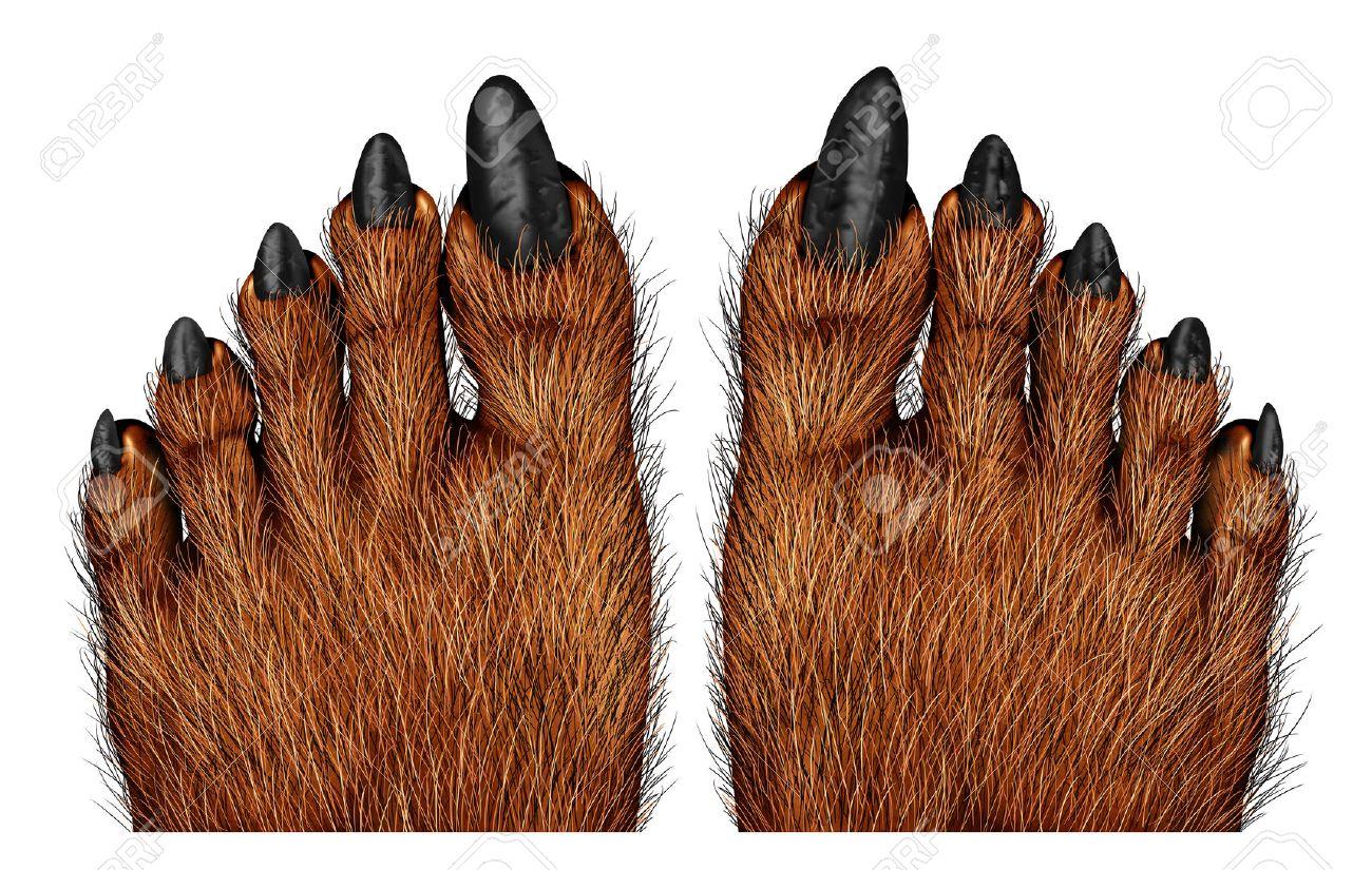 hairy feet stock photos. royalty free hairy feet images