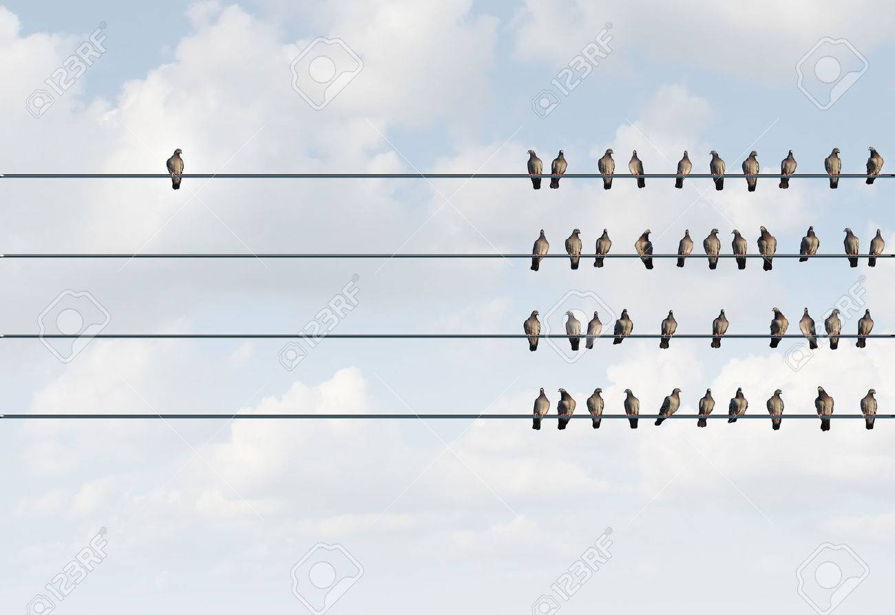 Individuality symbol and independent thinker concept and new leadership concept or individuality as a group of pigeon birds on a wire with one individual bird in the opposite direction as a business icon for new innovative thinking. Stock Photo - 44032865